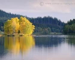 Nórsko sú aj čisté rieky, ostrovky porastené brezami sa ako zo zlata jagajú v slnečnom lúči