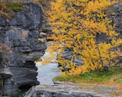 Zlaté lístie briez rozvoniavalo v chladnom rannom severskom vzduchu, miešalo sa s vôňami machov, lišajníkov a bublajúcej vody rieky Abeskoaetnu.