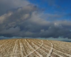 Naprieč harmóniou riadkov vybrala sa cesta do oblakov.