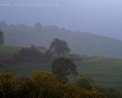 Jarné hmlisté ráno na úpätí Bielych Karpát