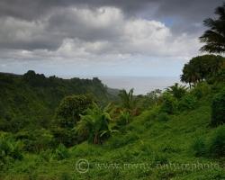 Áno toto je Karibik, more oblaky a zeleň všetkých premien. Chýbajú slová k opisu tej nádhery, len sa dívať.........