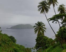 V období dažďov polieva teplý dážď pravidelne palmy, more ostrovy....