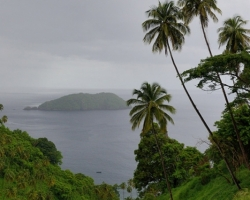 In the rainy season, watered warm rain regularly palms, sea and islands ......