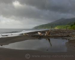 V období dažďov sa spoza sopky La Soufriere ženú tmavé oblaky, plnia potoky tropického pralesa a slnko len chvíľkami osvetlí zelenú ďzungľu.