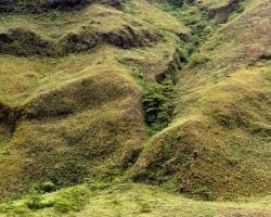 """V okolí krátera prudké dažde a hurikány dovolia rásť len trávam. Podmienky im sťažuje i teplo zo zeme, ktoré suší a spaľuje tropickú zeleň. Len vo """"vráskach"""" stien sa krčia drobné kry a stromy trochu chránené pred vyčíňaním živlov."""