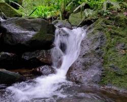 Príroda je tu ako špongia naplnená vodou. Tak ako padá pod chvíľou voda z oblakov, malé potôčiky ju zbierajú a stekajú po svahoch tropického dažďového lesa. Všetko v harmónii rovnováhe nádhere.