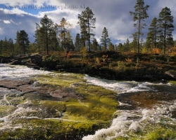 Picture captures one of the thousands of Norwegian crystal river sceneries.
