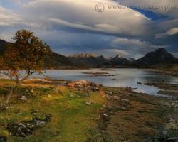 Keď do prevalujúcich sa oblakov, ktoré ako perina zakrývali v noci fjord preniknú prví poslovia dňa a do očí sa odrazí fascinujúca hra farieb oblohy, vody a pobrežia každému sa tíško uloží spomienka na krásu Lofotov.