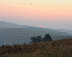 Autumn morning, steam rising from the valleys, grass with icy dew expect sun caress.