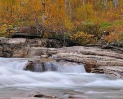 Krátke zastavenie pri malom potoku plnom brezových listkov, ktoré sa ako zlaté dukáty vznášali v jeho prúde.
