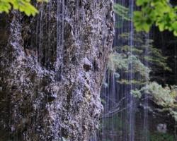 Water is driping through adjacent limestone near the waterfall Peričnik