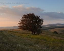 Slnko hladí kopce kde som doma na dobrú noc. Také prosté, tak krásne,,,,